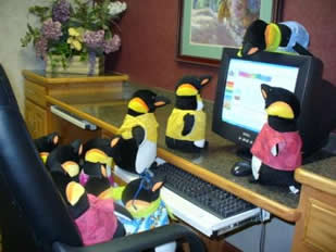 Penguins on the web